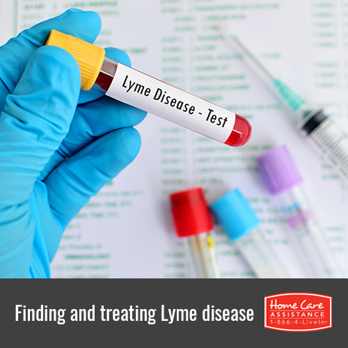 Identifying and Treating Lyme Disease in Harrisburg, PA