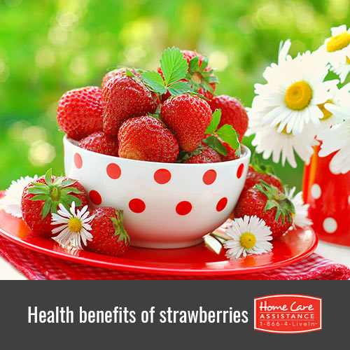 Why Strawberries Are Healthy for Seniors in Harrisburg, PA