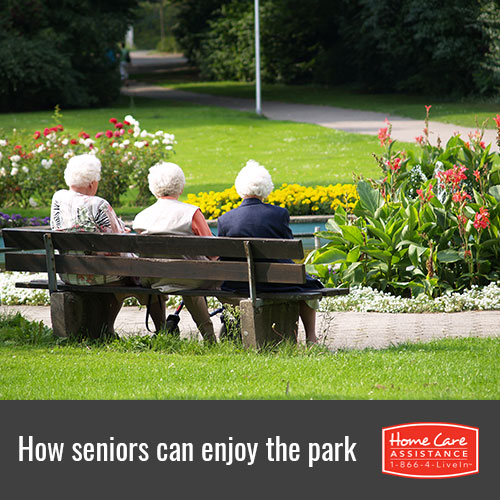 Helping the Elderly Enjoy a Day in the Park at Harrisburg, PA