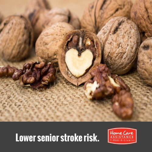 Fiber Lowers Elderly Stroke Risk