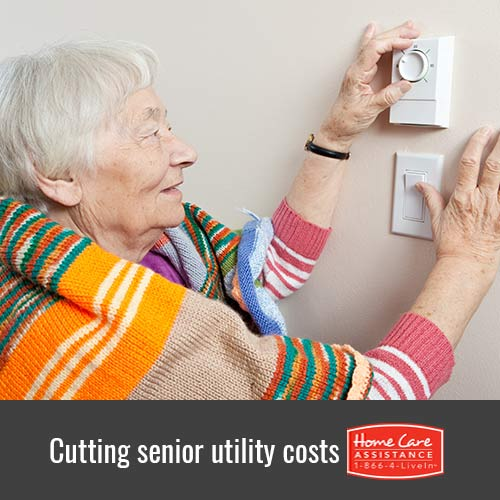 Tips for Cutting Senior Utility Costs in Harrisburg, PA
