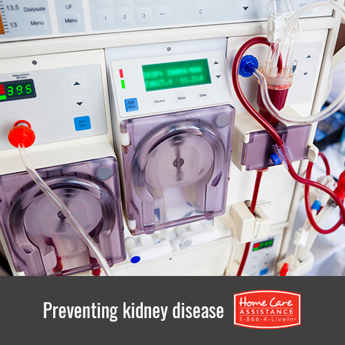 How to Prevent Kidney Disease in Harrisburg, PA