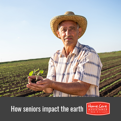 How Seniors Can Have a Positive Impact on the Environment in Harrisburg, PA