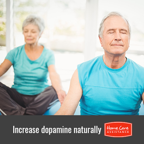 Increasing Dopamine Levels in Seniors in Harrisburg, PA